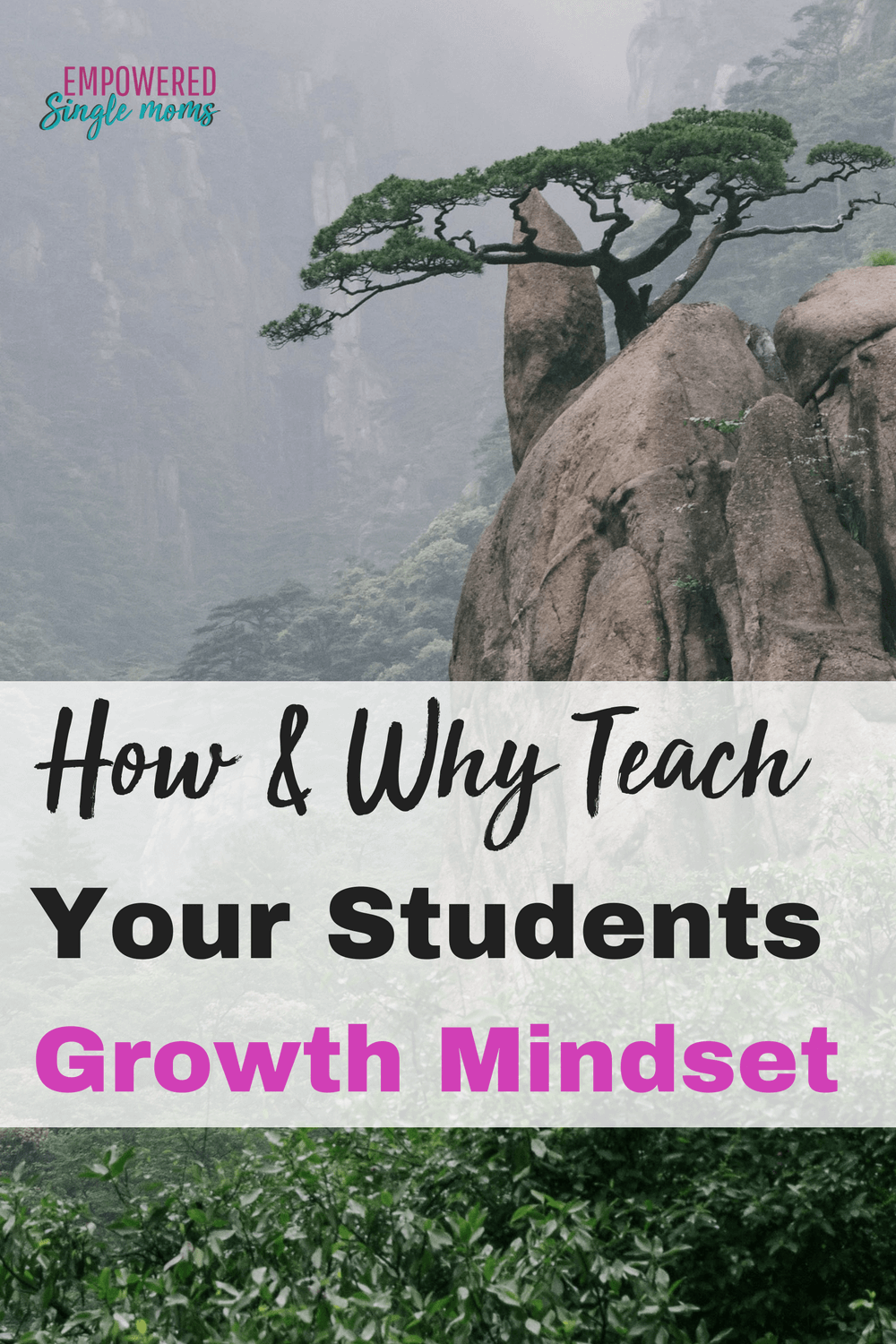 These fun YouTube growth mindset videos will help your kids reach their full potential. Whether you want your own kids to learn the importance of mindset or you are a teacher and you want the students in your classroom to do their best these quotes & videos are a must for them. #mindset